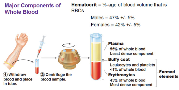 blood components testing and collection Our clinical centrifuges separate blood components for microbiological testing blood separation blood collection in a bottle is for microbiological.