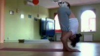 Yoga cat makes sure your asanas are done properly (Video and Pics)