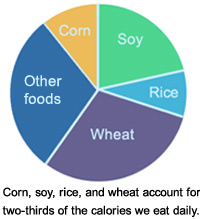 Pie chart showing two-thirds of the calories we consume come from corn, soy, rice, and wheat.