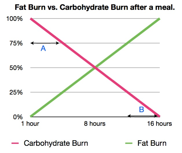 This graph exemplifies the simple idea that after a meal, there is no fat burning going on. As time passes, the body burns less carbs and eventually burns almost completely fat.