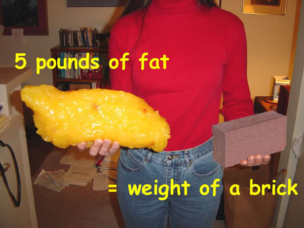 Overweight amp Weight Loss  Ask the Dietitian