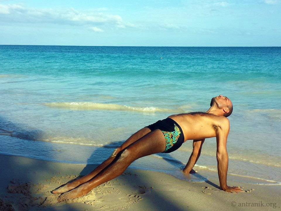 antranik performing reverse plank