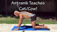 Improve Your Shoulder and Spinal Mobility with these 3 Cat/Cow videos!