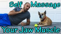 How to Self Massage your Masseter (Jaw) Muscle! Crucial for relieving headaches, TMJ, clenching, and bruxism
